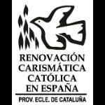 Rcccat logo